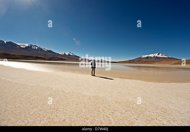 At the edge of a salt lake high in the Bolivian Andes, Bolivia, South America - Stock Image