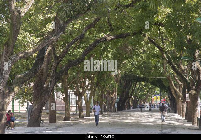 Tunel hoses boardwalk in the Praca da Republica - Centro Historico - Stock Image