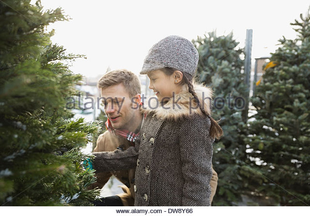 Father and daughter shopping for Christmas tree - Stock Image