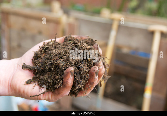 Handful of self made compost. - Stock Image