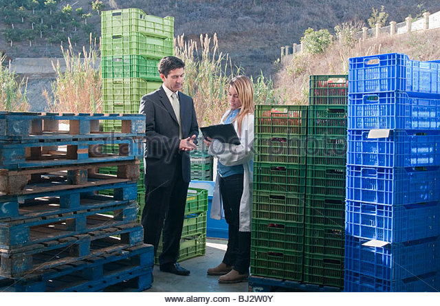 manager and worker on warehouse ramp - Stock Image