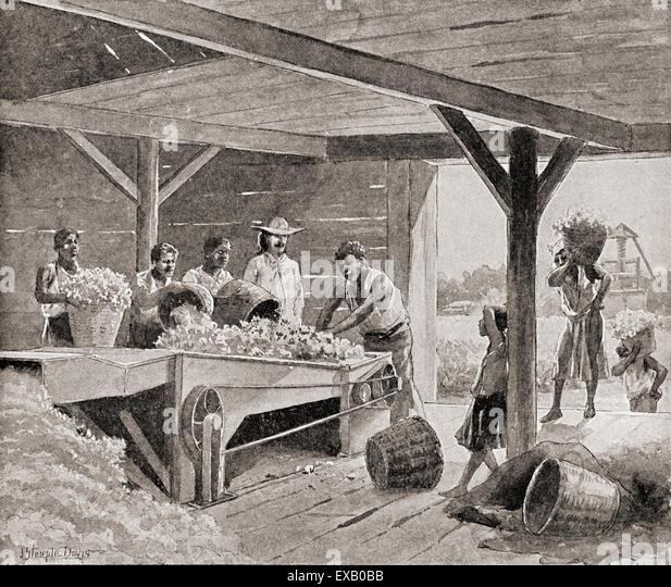 1800 S Colonial Scene On Demand: Plantation Slaves Stock Photos & Plantation Slaves Stock