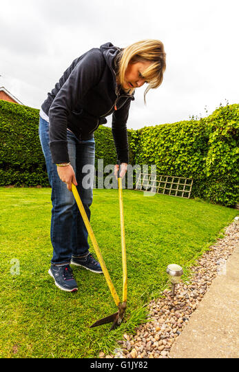 Woman gardening cutting grass with edging shears cutters working on lawn female gardener lady cuts grass UK England - Stock Image