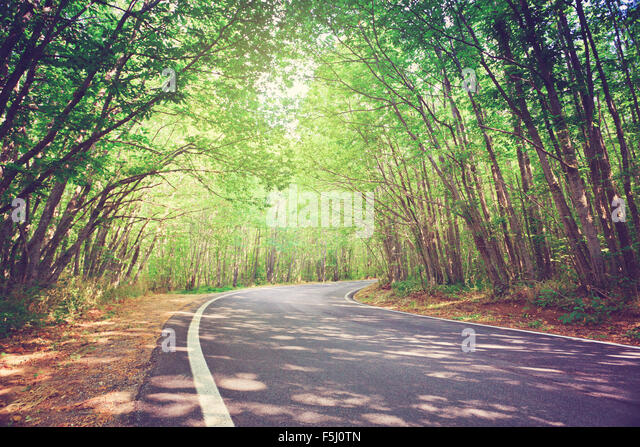 tree curve towards stock photos tree curve towards stock images alamy tree curve towards stock photos tree curve towards stock images alamy