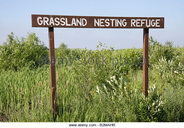 Wisconsin Kenosha Kansasville Richard Bong State Recreation Area grassland nesting refuge prairie wetland sign ecology - Stock Image
