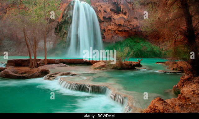 Waterfall in a forest, Havasu Falls, Havasupai Indian Reservation, Grand Canyon, Arizona, USA - Stock Image