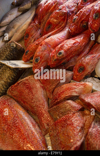 Asian fish market stock photos asian fish market stock for Oriental fish market