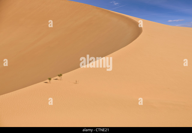 Dunes in the Rub Al Khali Desert in the western Oman - Stock Image