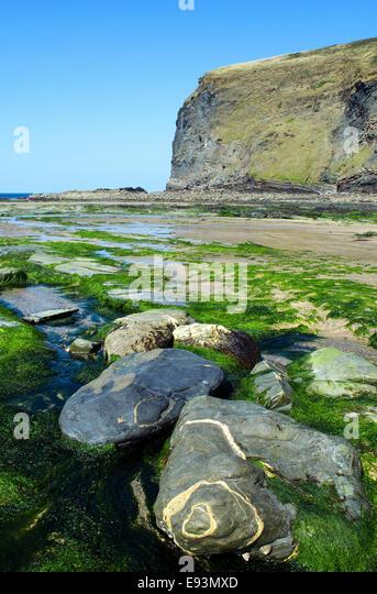 Crackington Haven in North Cornwall, UK - Stock Image