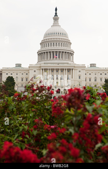 United states capitol, Washington DC, USA - Stock Image
