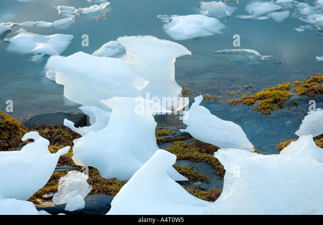 Ice blocks on the shore of Sermilik Fjord, East Greenland - Stock Image