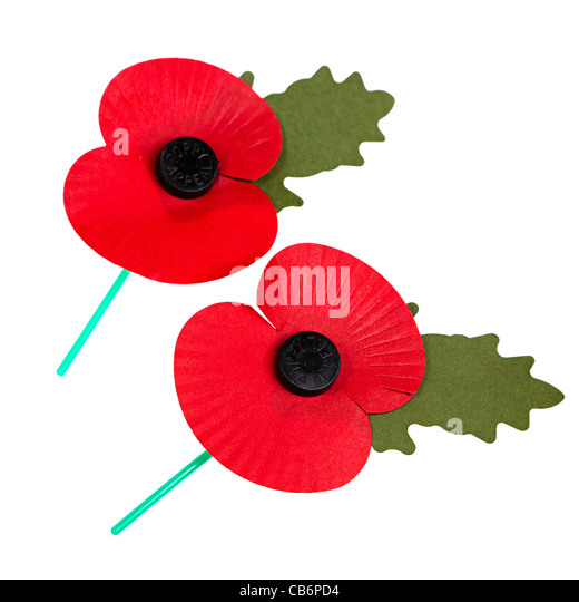 how to order poppies for remembrance day