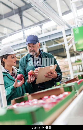Manager with clipboard and worker examining red apples in food processing plant - Stock-Bilder
