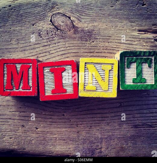 It's a photo of toy woodblocks with alphabet letters on them that are combined together to create the word MINT - Stock Image
