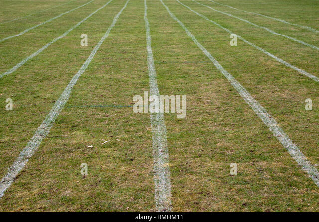 White lines on sports field make abstract patterns - Stock Image