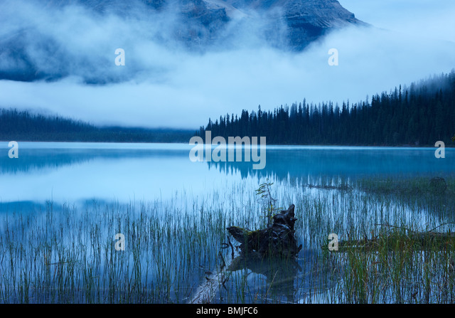 Emerald Lake at dawn, Yoho National Park, British Columbia, Canada - Stock Image