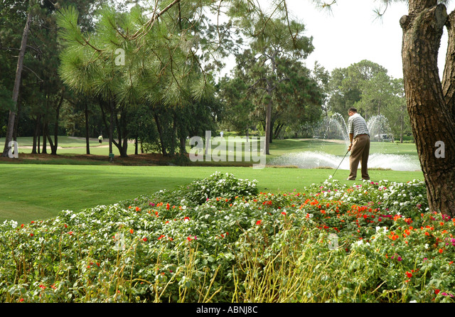 Tarpon Springs Florida Westin Innisbrook Resort Copperhead Golf Course fl MR - Stock Image