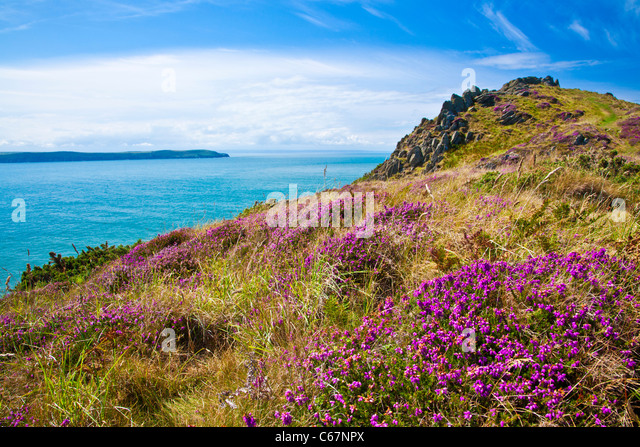 Morte Point near Morthoe, Woolacombe with a view over the Bristol Channel and Baggy Point, North Devon, England, - Stock Image