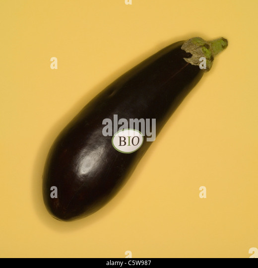 Organic Egg Plant, elevated view - Stock Image