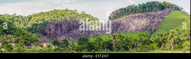 Deforestation in Guatemala. - Stock Image