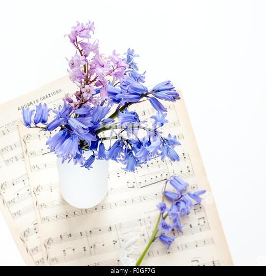 bluebells in white bottle on vintage music paper - Stock Image