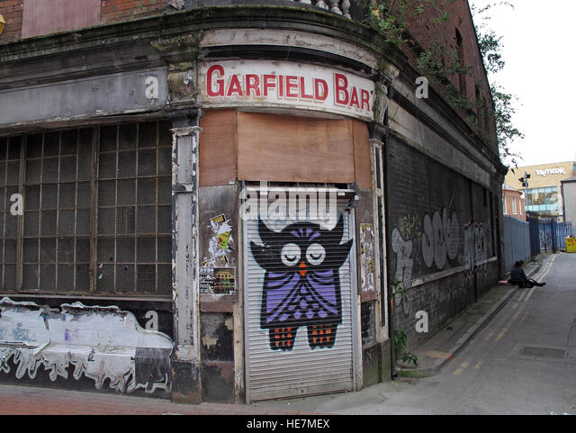 Belfast Garfield St Owl graffiti - Garfield Bar City Centre, Northern Ireland, UK - Stock Image