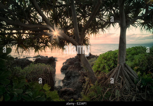 Rocky coastline with small inlet. Maui, Hawaii - Stock Image