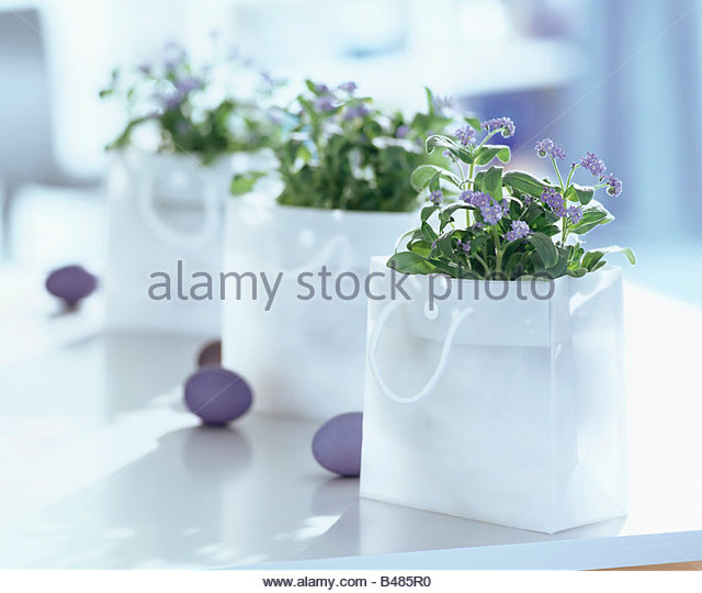 Forget-me-nots in carrier bags & blue Easter eggs - Stock Image
