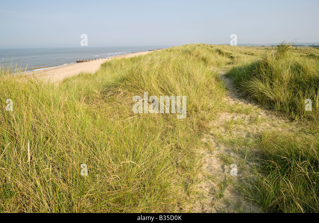Sand dunes and beaches near Great Yarmouth, Norfolk - Stock Image