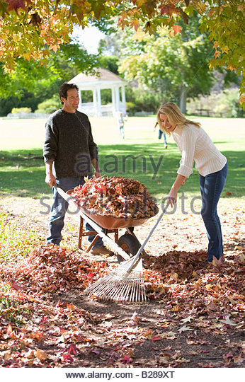 Yard Cleaning Stock Photos Amp Yard Cleaning Stock Images