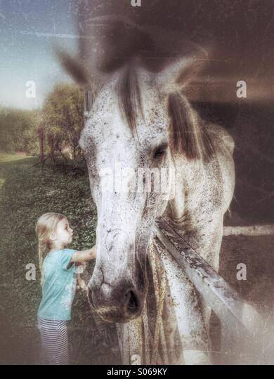 Girl petting a horse. - Stock Image