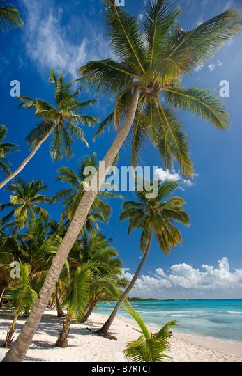 BEACH ON SAONA ISLAND PARQUE NATIONAL DEL ESTE DOMINICAN REPUBLIC CARIBBEAN - Stock Image