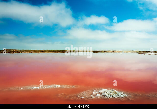 A red salt lake near Walvis Bay in Namibia, Africa - Stock Image