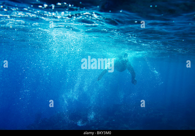 Underwater view of a swimmer enjoying a relaxing swim in the tropical waters off of Mana Island, Fiji. - Stock Image