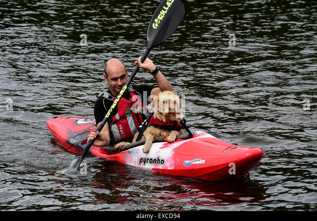 Dog Rescue Derby Uk