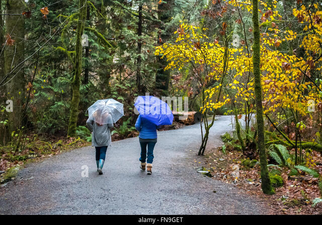 Two women jogging in the rain with umbrellas, Victoria, British Columbia, Canada - Stock Image