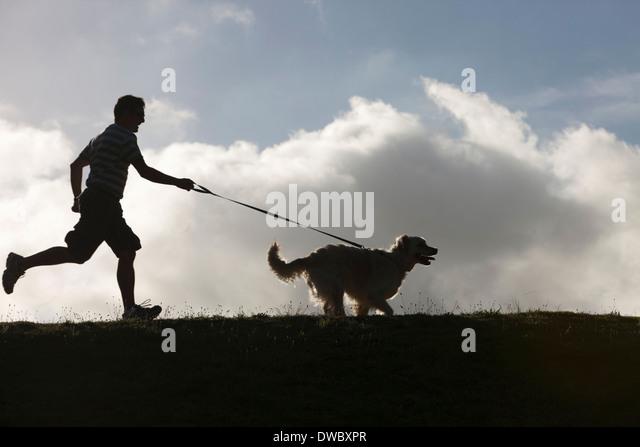 Man running with dog on lead - Stock-Bilder