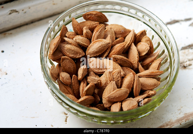 Plum seeds drying in a bowl on the windowsill of a farm in Germany. - Stock Image
