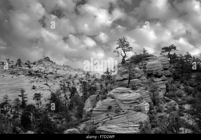 View of rock formations in Zion National Park, Utah - Stock Image