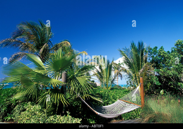 Tropics Hammock hanging between palm trees - Stock Image