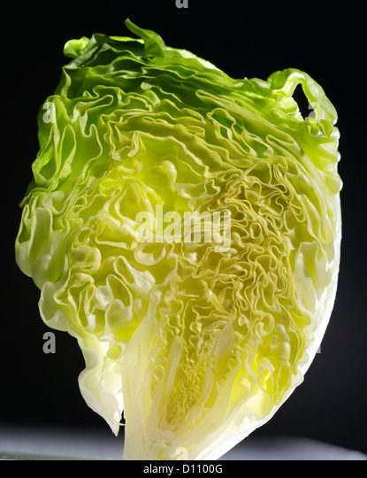 Detail of  upright lettuce - Stock Image