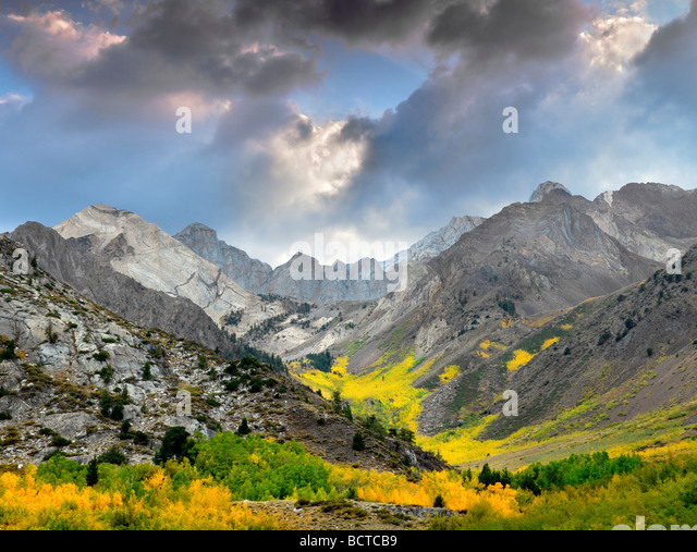 McGee Creek canyon with fall colored aspens Inyo National forest California - Stock Image