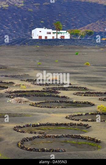Spain, Europe, Canary Islands, La Geria, Lanzarote, agriculture, black, desert, dry, house, island, lava, vineyards, - Stock Image