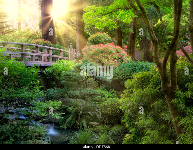 Bridge and stream. Portland Japanese Garden, Oregon - Stock Image