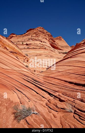 The Mini Wave formation, Coyote Buttes Wilderness, Vermillion Cliffs National Monument, Arizona, United States of - Stock Image