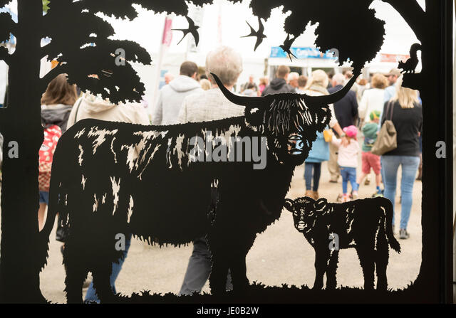 Edinburgh, Scotland, UK. 22nd June, 2017. The first day of the Royal Highland Show in Edinburgh Credit: Kay Roxby/Alamy - Stock Image