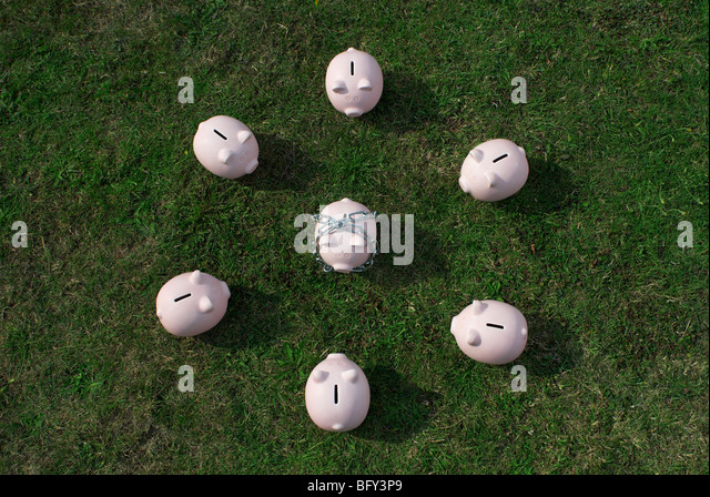 piggy bank in chain surrounded - Stock Image