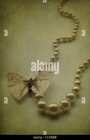 Butterfly over a pearl necklace - Stock Image