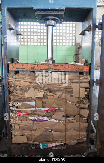 Pressed cardboard for recycling - Stock Image