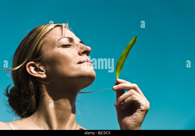 Fresh scent of nature - Stock Image